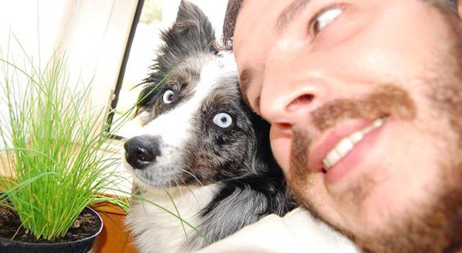 Amore, gioco e coccole per il tuo cane, Hundesitter in Bolzano