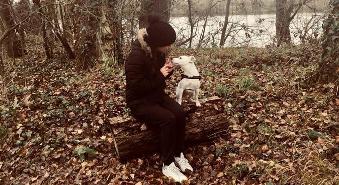 Maison des câlins ballades de folie, dog sitter à Toulouse