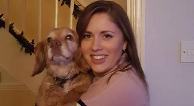 Dog walking and cuddles, dog sitter in Trowbridge