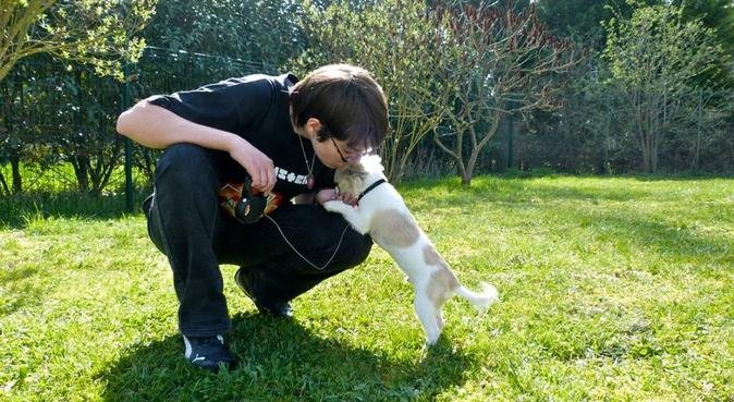 Promenade de chiens/ Garde de chats, dog sitter à Joué-lès-Tours