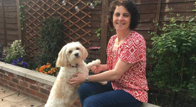 Home is where the Doggy is!, dog sitter in RICKMANSWORTH