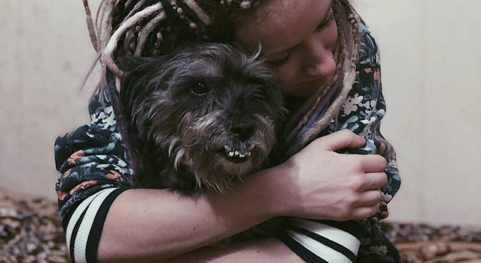 Amazing day with Sasha, dog sitter in Bristol