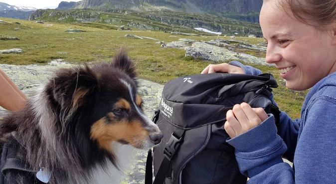 Hundeelskende studentpar som elsker lange turer!, hundepassere i TRONDHEIM