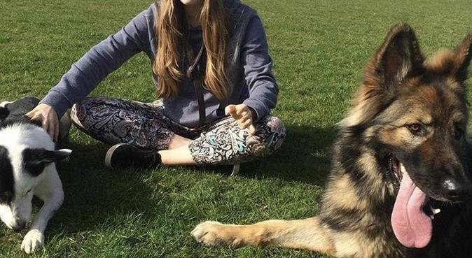 Wags n Tails, dog sitter in Reading, UK