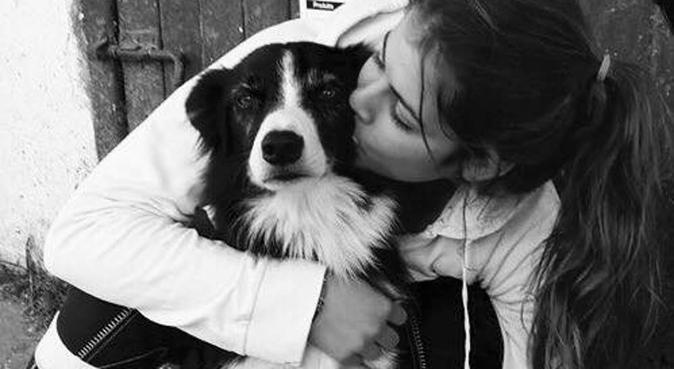 Les balades du bonheur à Dijon, dog sitter à Dijon