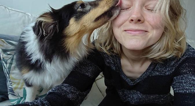 Hundpassning eller promenad i fina Lunden, hundvakt nära Göteborg