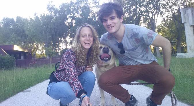 Passeggiate rilassanti con i vostri amici pelosi, dog sitter a Lucca
