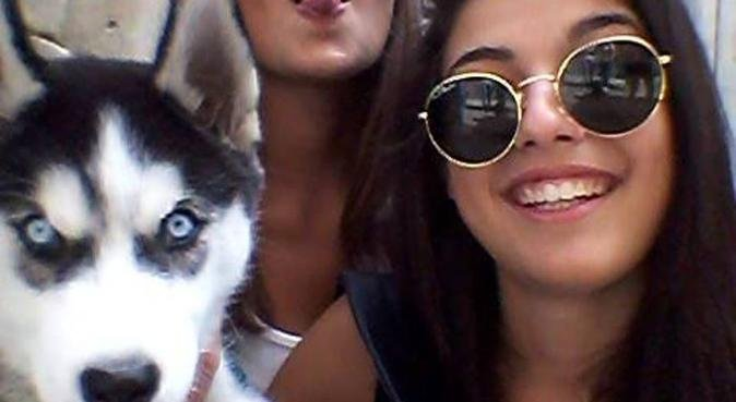 Per un cane più fedele, scegli Rossella Mele!, dog sitter a Parma