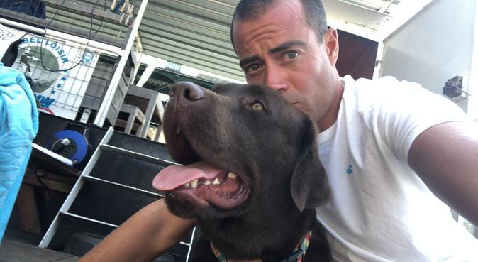 Complice et affectueux avec nous boules de poils, dog sitter à Suresnes