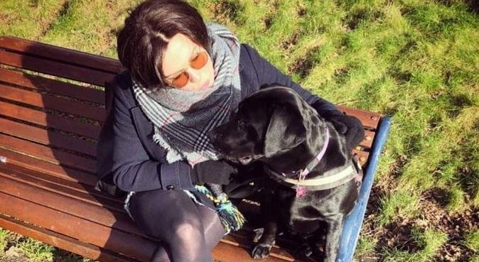 Surrogate dog parent in central Liverpool!, dog sitter in Liverpool, UK