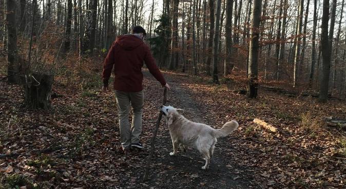 Hundefreund gesucht - Masterand in Vaihingen, Hundesitter in Stuttgart