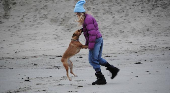 Finnes ikke dårlig vær, bare dårlig klær., hundepassere i Sandnes, Norge