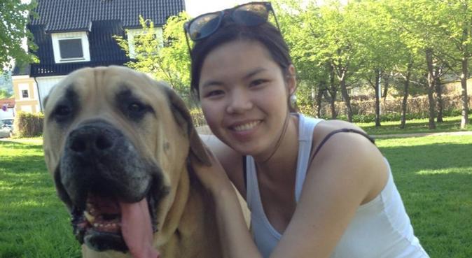 Erfaren og livlig hundepasser :), hundepassere i DRAMMEN