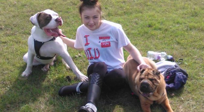 Fur Babies needing walks & cuddles in Bristol🐶, dog sitter in Bristol