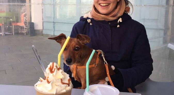 Petit cocon dans le centre de Rennes, dog sitter à Rennes, France