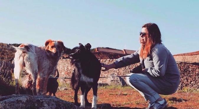 Paseo a tus perros, canguro en Madrid
