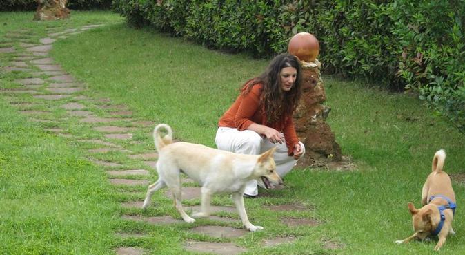Sii amico del mio cane, e sarai anche il mio amico, dog sitter a Monza