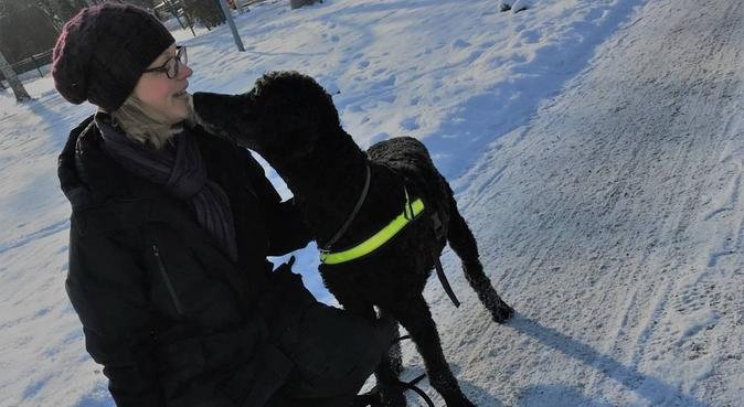 Trygg hundpassning på helger, hundvakt nära Uppsala