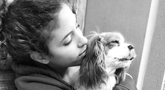 Dog sitter che stavi cercando, dog sitter a Verona