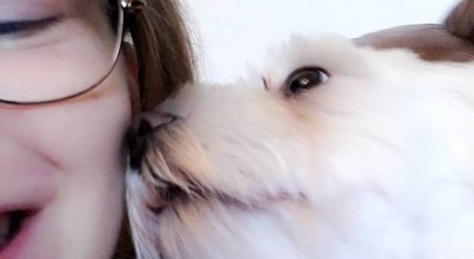 Kärleksfull och anpassningspar hundvakt., hundvakt nära Gävle