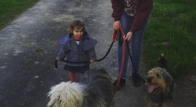 Une balade dans la joie et la bonne humeur, dog sitter à Toulouse