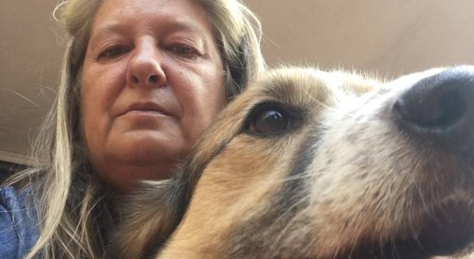 Coccole e amore per i nostri amici pelosetti, dog sitter a Grottaferrata, RM, Italia