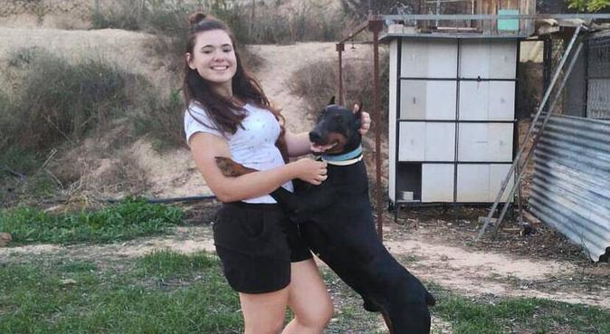¡Vacaciones para tu perrete!, canguro en Alcantarilla