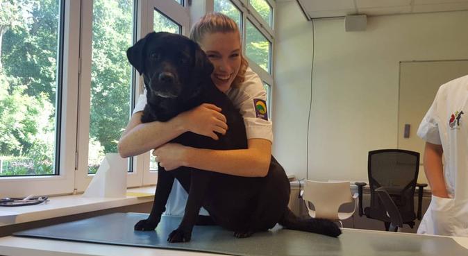 Ervaren hondenliefhebber met grote tuin!, hondenoppas in Langbroek