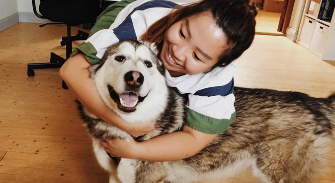 DoggieCare (walks and cuddles guaranteed), hundvakt nära Göteborg