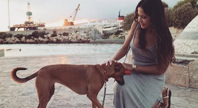 Paseadora de perros Almería., canguro en Almería, España