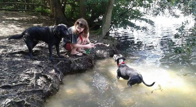 Professional & experienced dog walker in Slough, dog sitter in Slough