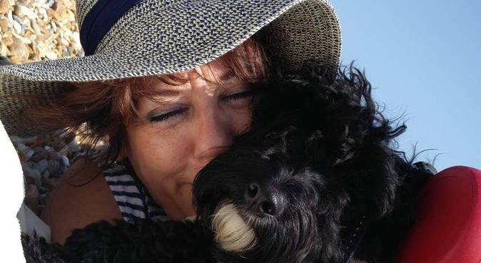 Small dog bliss, dog sitter in Hove