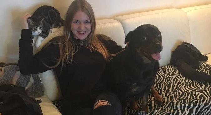 O'Paradis des chiens, dog sitter à Franconville