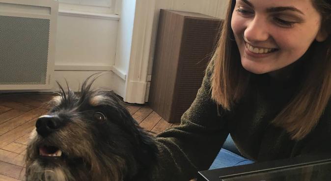 Promenade et câlins à volonté, dog sitter à Villeurbanne, France