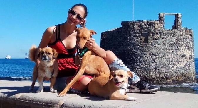 Amante de los perros, dog sitter in Las Palmas
