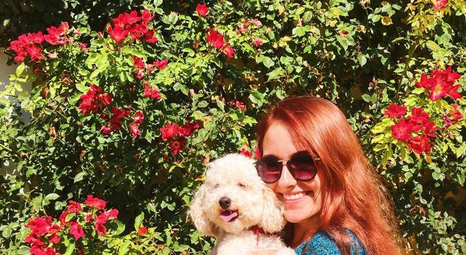 Belle passeggiate con il tuo cane, dog sitter a Rimini, Province of Rimini, Italy