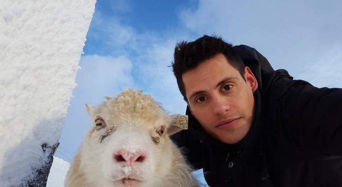 La Casa del Amor y las Mascotas, canguro en Sitges