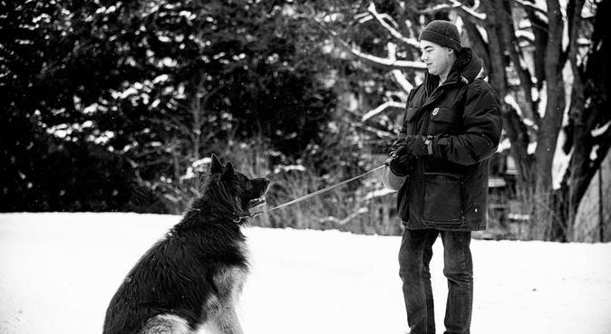 Pass og lufting rundt Bjerke og turer i Nordmarka, hundvakt nära Oslo