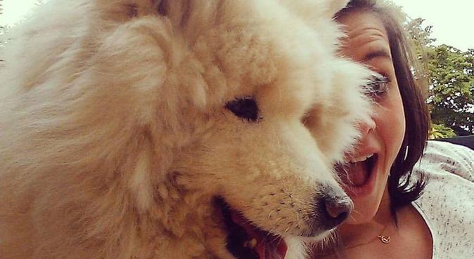 Amour de boules de poils !, dog sitter à Reims