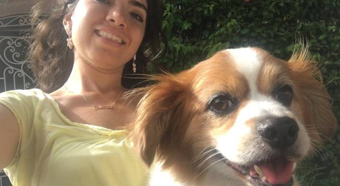Les chiens.. mes amours !, dog sitter à Courbevoie
