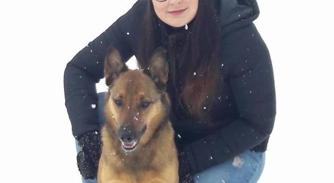 Promène vos toutous secteur forêt de montmorency, dog sitter à Deuil-la-barre