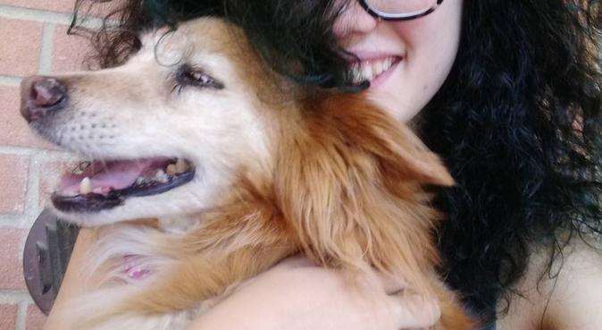 Cinofila pronta a dedicargli tutte le attenzioni, dog sitter a Modena