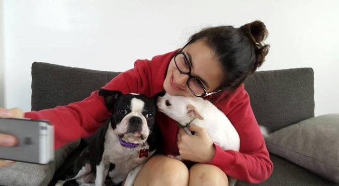Lots of love and care for your pet!, Hundesitter in Hamburgo