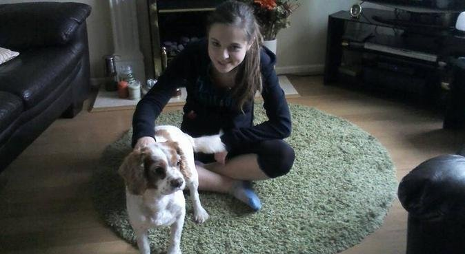Dog lover looking for pals to walk!, dog sitter in Worcester