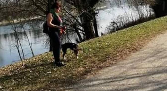 Amo i cani unici a dare amore incondizionato, dog sitter a Torino