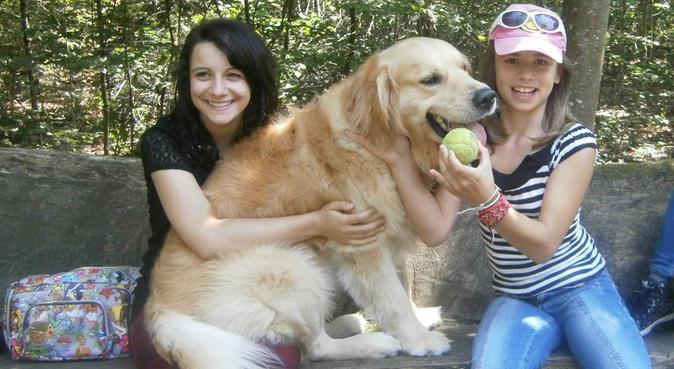 Balades, câlins et amour !, dog sitter à Angers