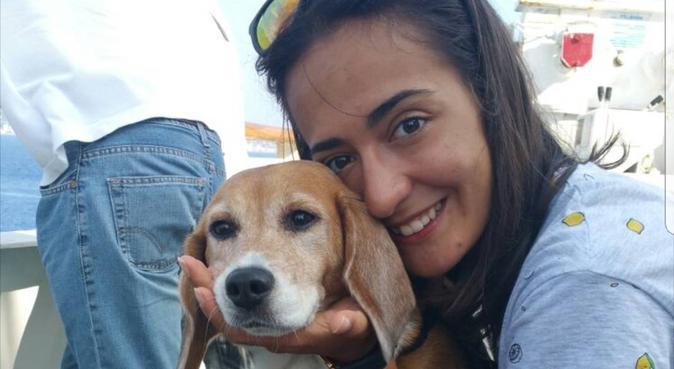 Lunghe passeggiate e tanto AMORE ❤, dog sitter a Rimini, RN, Italia