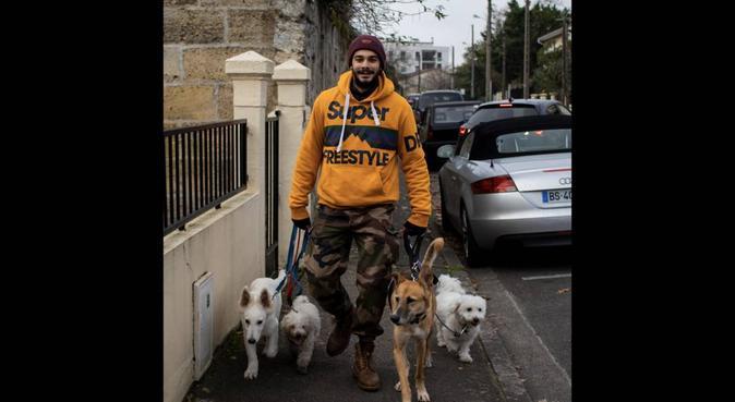 PROMENEUR CANIN BORDEAUX et TALENCE, dog sitter à Talence