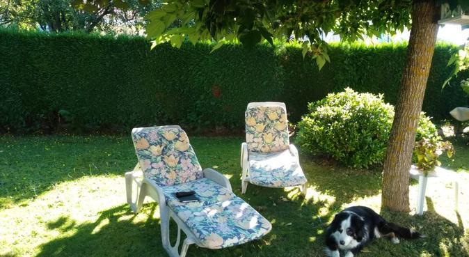 Votre chien en bonne compagnie, dog sitter à Nice