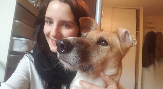 Pet sitting en école vétérinaire, dog sitter à Maisons-Alfort